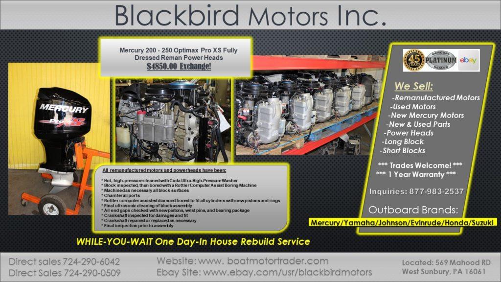 Blackbird Motors Inc